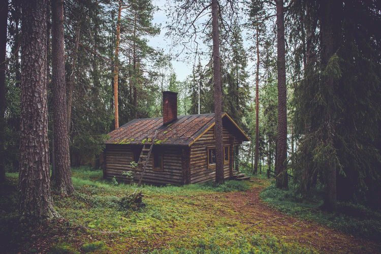 remote-cabin-in-the-forest